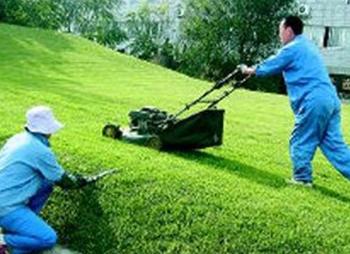 园林绿化养护服务_惠州保洁